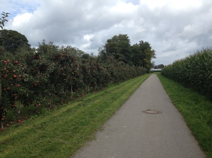 BIKE PATH AROUND FRIEDREICHSHAFEN