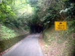 THIS LONG TUNNEL WILL MAKE MORE SENSE AFTER I RIDE TO IZOLA USING A DIFFERENT ROUTE.