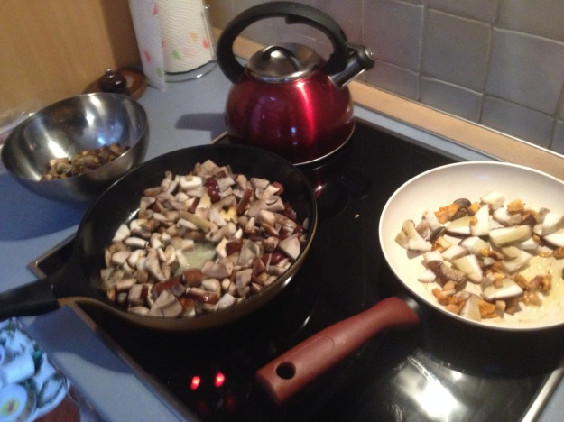 I COOKED AND FROZE THE MUSHROOMS FOR WINTER USE.