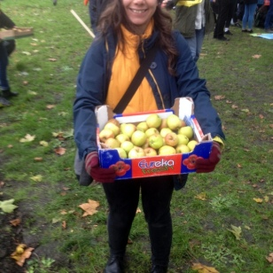 VOLUNTEERS GIVING OUT FREE APPLES