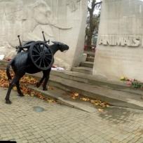 ANIMAL OF WAR MEMORIAL