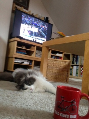 DO EXERCISES WITH TOBY WHILE WATCHING THE BLAZER GAME