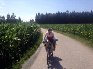 LOTS OF CORN IN AUSTRIA, JUST LIKE SLOVENIA