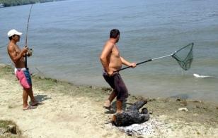 CATCHING BIG FISH IN DELTA