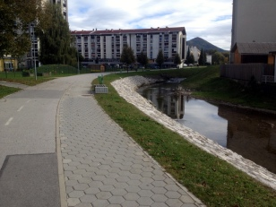 BIKE PATH IN TOWN