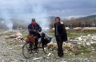 SHEEP FARMER WAS BURNING WOOL