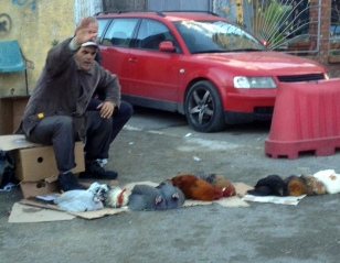 YOU CAN BUY CHICKEN ON THE STREETS HERE TOO