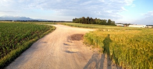 BIKING IN THE FARMERS FIELDS