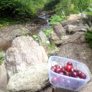 BIKING & CHERRIES BY THE RIVER