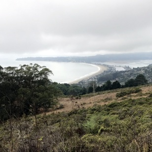 BOLINAS-STINSON VIEWS